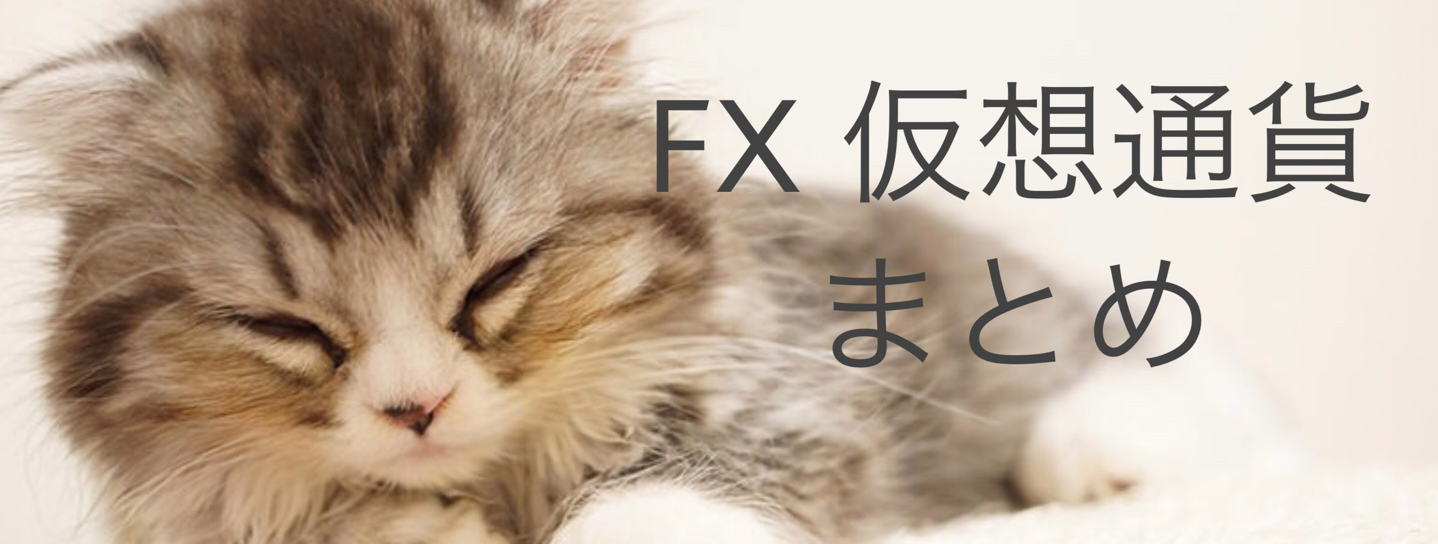 FX 仮想通貨 まとめ