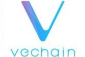 仮想通貨VeChainとは?今後の将来性は?